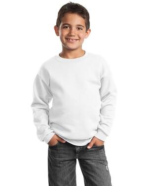 Youth Crewneck Sweatshirt.